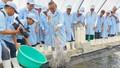 Bạc Liêu với kỳ vọng trở thành Trung tâm ngành công nghiệp tôm của cả nước