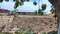 Đồng Nai: Buông lỏng quản lý đất công tại xã Hố Nai 3