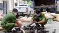 Phát hiện, thu giữ hơn 6 tấn lông gia súc không rõ nguồn gốc ở Lào Cai