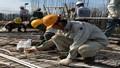 Trường Cao đẳng Công thương Hải Dương: Tăng cường mô hình liên kết hợp tác đào tạo giữa nhà trường và doanh nghiệp