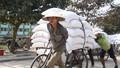 Cần rút bớt lao động phi chính thức để cải thiện chất lượng kinh tế