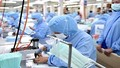 Bộ Công thương lưu ý Doanh nghiệp xuất khẩu khẩu trang, đồ bảo hộ y tế vào EU