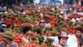 Tin vui: Vải thiều Việt Nam sẽ sớm được xuất sang Nhật Bản