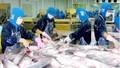 Algeria là thị trường xuất khẩu tiềm năng của thủy hải sản Việt Nam