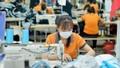 Một số mặt hàng dệt may xuất khẩu sang Liên minh Kinh tế Á Âu có nguy cơ vượt ngưỡng
