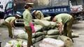 Bắt giữ trên 1 tấn chả cá và sủi cảo nhập lậu