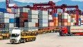 Hàng hóa được miễn thuế xuất khẩu, nhập khẩu theo điều ước quốc tế dựa trên cơ sở nào?