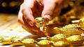 Giá vàng hôm nay 8/5: Giá vàng SJC tăng theo chiều tăng bứt phá của vàng thế giới