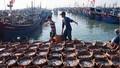 Bảo đảm năng lực xử lý tốt các tình huống trên biển