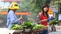 Bộ Nông nghiệp yêu cầu kiểm tra  giá rau quả giảm mạnh