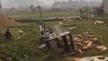 Xe tải lật, lợn 'xổ lồng' chạy quanh ruộng ở Lạng Sơn