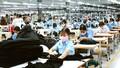 CTCP Dệt may Nha Trang bị xử phạt 60 triệu đồng