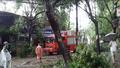Hà Nội tập trung khắc phục hậu quả sau cơn bão số 1