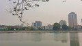 Thực hư về việc 91% người dân đồng thuận lấp hồ Thành Công