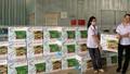 Công ty Thanh Hà xuất khẩu chế phẩm sinh học sang Myanmar