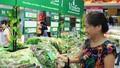 Vinmart chính thức phân phối rau sạch Vineco
