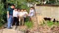 Sạt lở bờ sông, nhiều hộ dân An Giang phải di dời khẩn cấp