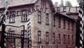 Những cuộc thử nghiệm vô nhân đạo của Bayer trên cơ thể người tù khổ sai