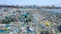 Khẩn trương giải quyết nạn ô nhiễm môi trường ven biển