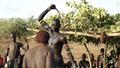 """Nghi lễ tàn bạo chứng minh """"tình yêu"""" của phụ nữ Ethiopia với người đàn ông trong gia đình"""