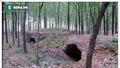 Rợn người với hủ tục con cái chôn sống cha mẹ già thời Trung Hoa cổ
