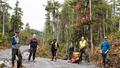 Bài học đổi mới tư duy quản lý rừng tại Alaska