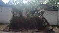 Xà cừ bật gốc đè sập nhà trong công viên Tao Đàn