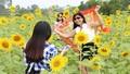 Giảng viên trẻ thu tiền triệu mỗi ngày nhờ hoa hướng dương