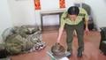 Phát hiện vụ vận chuyển trái phép 61kg tê tê ở vùng biên Quảng Trị