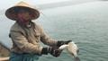 Nguyên nhân cá biển chết bất thường có trong tuần tới?