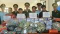 Hà Tĩnh: Bắt xe khách thiết kế hầm bí mật, chở gần 200kg pháo nổ