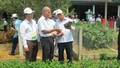 Hà Tĩnh: Ngỡ ngàng trước những khu dân cư kiểu mẫu, vườn mẫu
