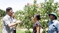 Xã Đồng Phúc (Bắc Giang) đạt chuẩn nông thôn mới, mở rộng cơ hội phát triển kinh tế