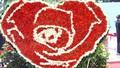 Lễ hội Hoa hồng Bulgaria: Ban tổ chức nói gì về hoa giả?