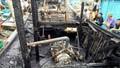 Thanh Hóa: Cháy bình ga trên tàu, 3 ngư dân được giải cứu kịp thời