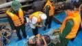 Cứu hộ thành công tàu cá bốc cháy cùng 8 thuyền viên gặp nạn trên biển