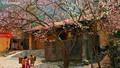 Hà Giang - vẻ đẹp tiềm ẩn nơi địa đầu Tổ quốc