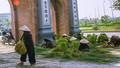 Chuyện cái cổng làng quê tôi