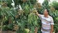 Bác Hai miền Tây từ lo không đủ ăn đến tỷ phú nông dân