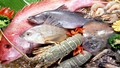 Lưu ý khi chế biến hải sản