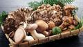 Mẹo nướng hoặc làm chín nấm trong lò vi sóng tốt hơn cho sức khỏe