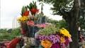 Ngày 20/10: Giá hoa trên thị trường Hà Nội tăng mạnh