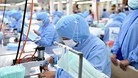 Việt Nam xuất khẩu hơn nửa tỷ chiếc khẩu trang mùa dịch