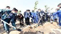 Hà Nội đã hoàn thành Chương trình 1 triệu cây xanh trước 2 năm