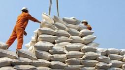 Philippines bỏ kế hoạch nhập khẩu 300.000 tấn gạo, lô hàng của Việt Nam bị hủy