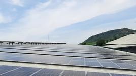 Điện mặt trời - Nguồn năng lượng xanh trong chiến lược phát triển bền vững của Tập đoàn TH
