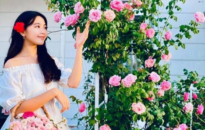 Ngắm căn nhà đầy hoa của nghệ sĩ Quyền Linh