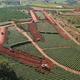 Công an tỉnh Lâm Đồng đang điều tra làm rõ vi phạm liên quan tới đất đai tại Bảo Lộc (Lâm Đồng).