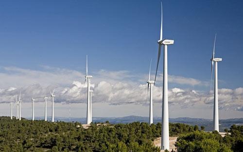 Giảm giá FIT điện gió: Doanh nghiệp trong nước bị lấn át