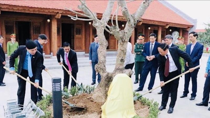 Các quận, huyện sẽ đồng loạt ra quân phát động Tết trồng cây từ 9h30 phút, ngày 17/2/2021